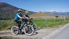 Escursione in bicicletta tra i vigneti