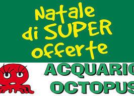 Acquario Octopus - Copertina volantino natalizio