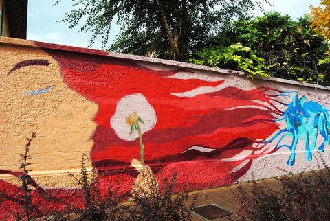 Il murale realizzato il via Pollio Salimbeni