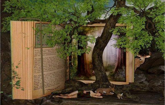 Libri all'aperto