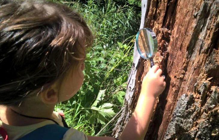 Terra Terra - Educazione Naturale