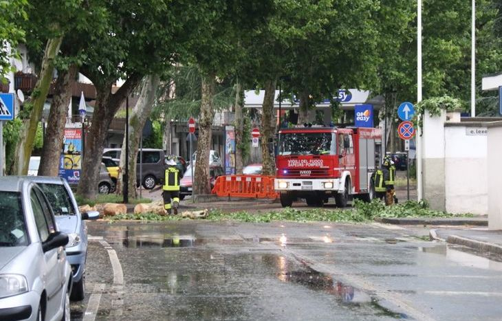 L'albero caduto in Via Saint-Martin