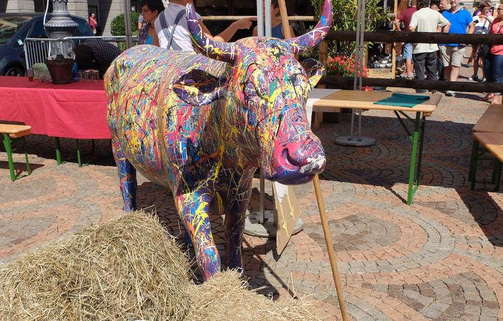 mucca colorata