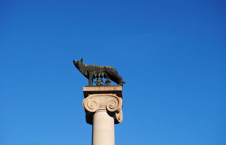 Lupa - piazza Repubblica